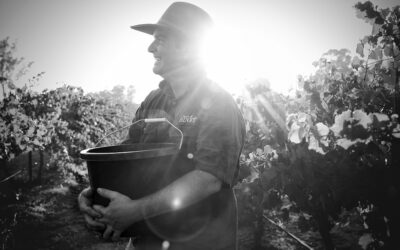 12 Rounds with Wine Maker – Daniel Binet